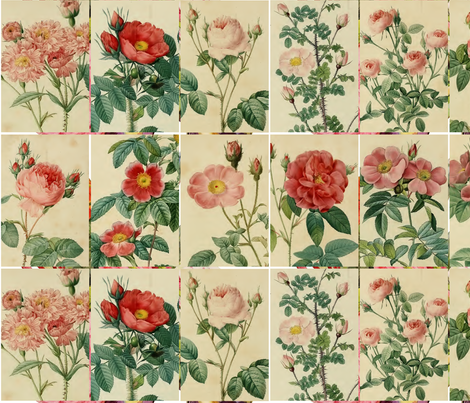 Antique Roses - 10cm by 15cm Rectangles fabric by kura_carpenter on Spoonflower - custom fabric