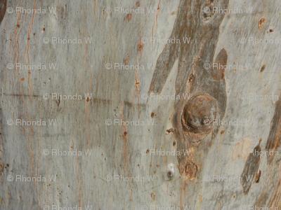 Decorative Bark Border Stripes (Ref. 4295)
