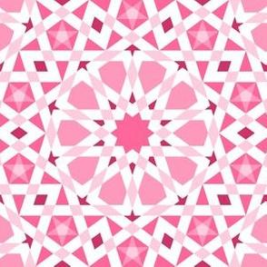 04406882 : UA5 V* : warm pink
