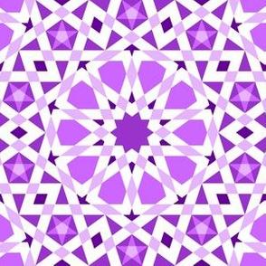 04406884 : UA5 V* : red-violet purple