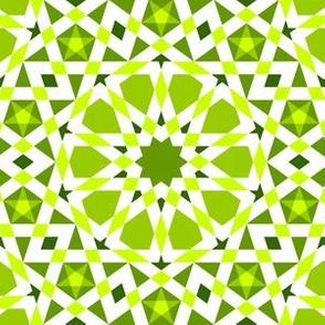 04406886 : UA5 V* : verdant