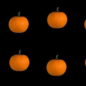 halloween orange pumpkin black background