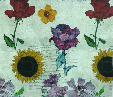 botanical_sketchbook