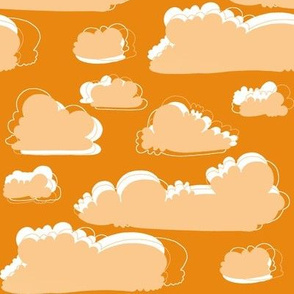 birds orange and peach clouds