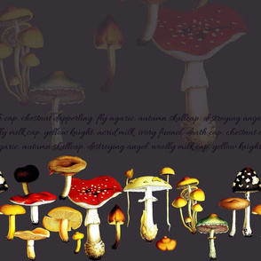 poison mushrooms (dusty purple)