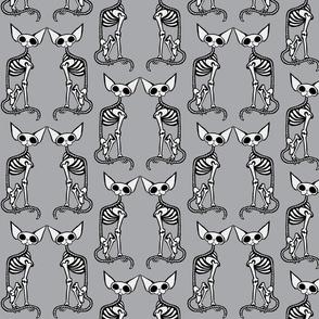 SphynxieBonez Front to Front in Grey