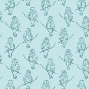 Sir Oswald Owl in Light Blue