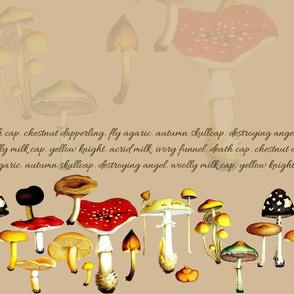 poison mushrooms (tan)