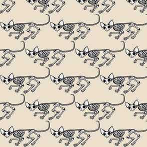 Triangular Skulking SphynxieBonez in Beige