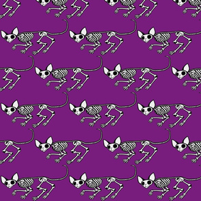 Triangular Skulking SphynxieBonez in Purple