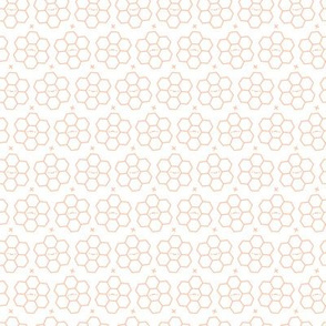 Hexagons // Coral