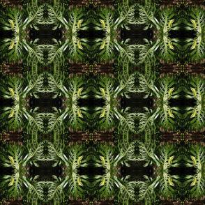 Tropical Leafy Damask (Ref. 4068)