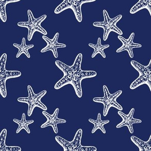 Patriotic Starfish