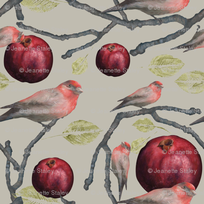 Pomegranate and Finches/Touch of Grey