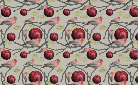 Pomegranate and Finches/Touch of Grey fabric by flyingcanvasstudio on Spoonflower - custom fabric