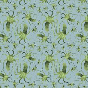 green cephalopod