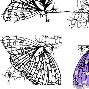 Butterfly sketches