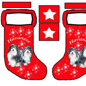 Havanese Christmas stocking pattern