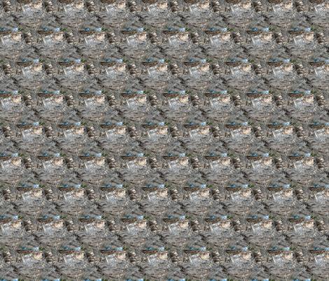Melaleuca Bark Lattice (Ref. 4072) fabric by rhondadesigns on Spoonflower - custom fabric