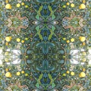 Zingy Lime Plaid (Ref. 4103)