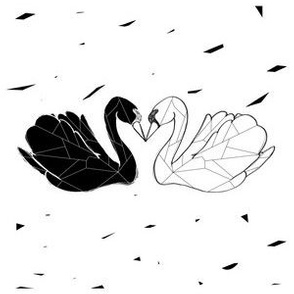 trash love_swans