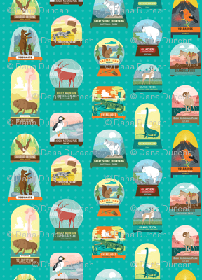 National Parks Snow Domes in Teal