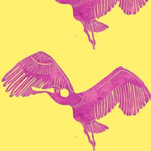 everglades spoonbill on yellow-ed