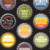 Soda Nation (2-liter Cola) || bottlecap bottle cap national park America United States nps polka dots typography cola travel summer food drink vacation