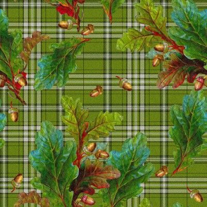 Kinlock Forest Tartan in bracken green