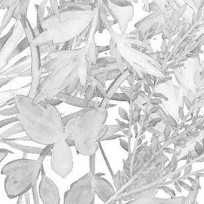 foliage dove