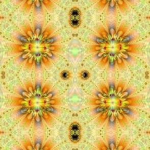 fractal joy
