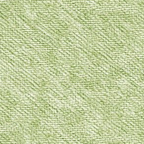 pencil texture in forest and moss on white