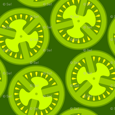 04447386 : S43 green tomatoes
