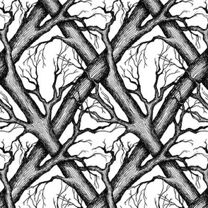 Branches - white