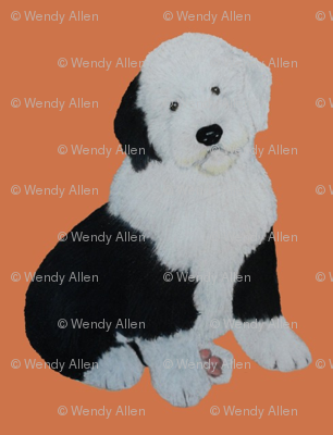 Sheepdog puppy