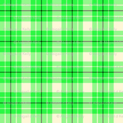 Sugar Cookie Check - Green