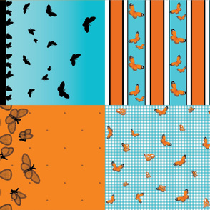 orangelacewingbutterflyset3