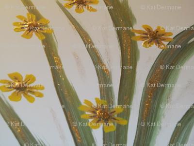 Gold Dust Daisy