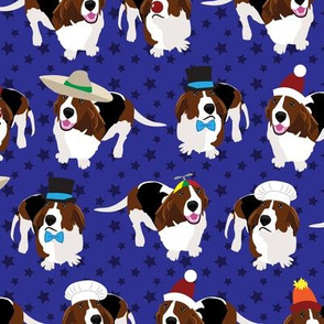Bassets in Hats