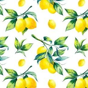 lemons branch