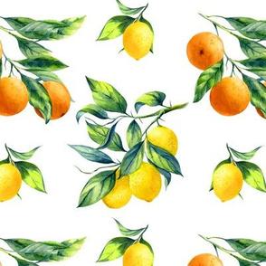 lemon and orange branch