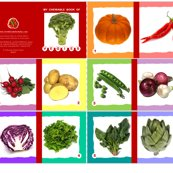 Rmy-chewable-book-of-vegies_shop_thumb