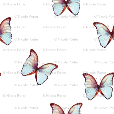 Botanical Butterflies, Ice Blue