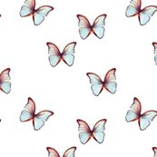 Rbutterfly-01_shop_thumb