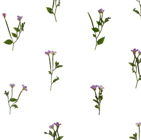 Rrpurple_weeds_open_shop_preview