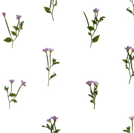 Pressed Purple Flowers fabric by crumpetsandcrabsticks on Spoonflower - custom fabric