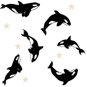 Killer Whales + Stars on White