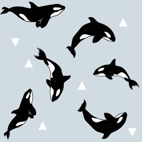 Killer Whales + Triangles on Blue