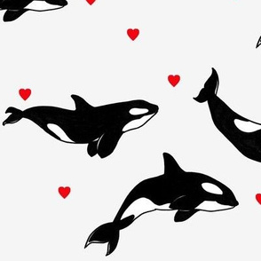 Killer Whales + Hearts