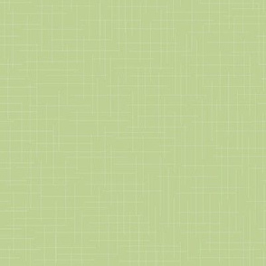 Pear Green Background